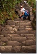 Wayna Picchu Steps 28-06-2011 (wildyellowbelly photography