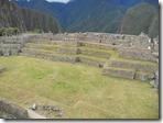 Machu Picchu!!! 28 06 2011 198