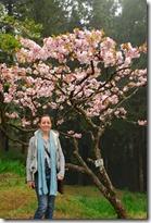 Taiwan - Alishan 27-03-2010