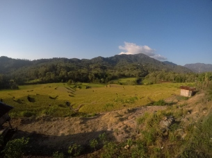 Rice paddies absolutely everywhere!