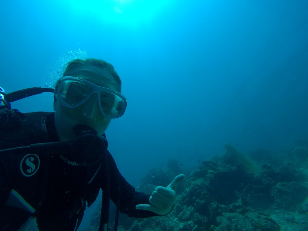 a scuba diver under the sea