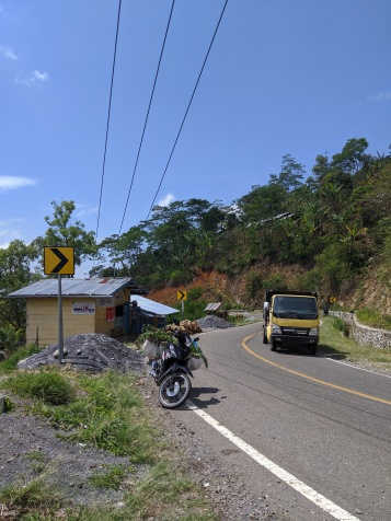 Life in the hills of Flores.